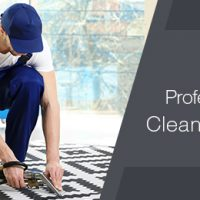 Hire-professional-carpet-cleaning