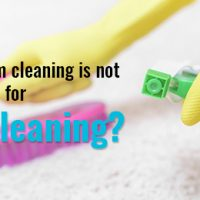 professional -carpet-cleaning